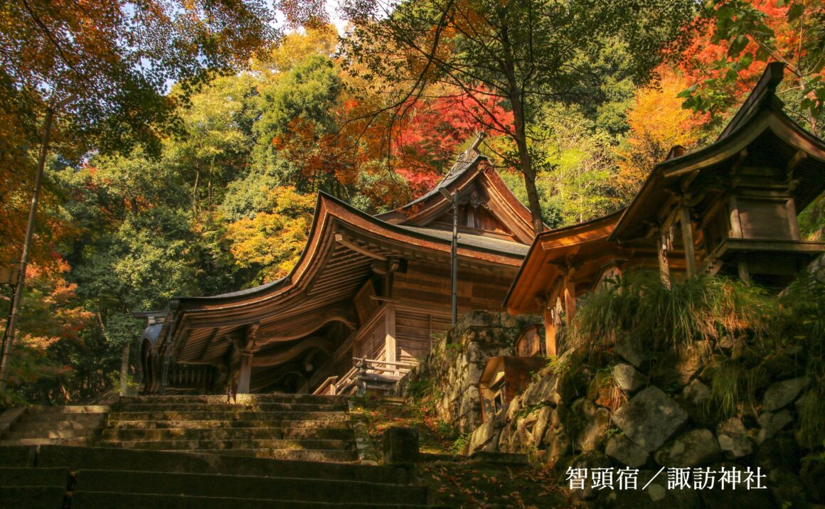 Suwa Shrine famous for autumn red leaves