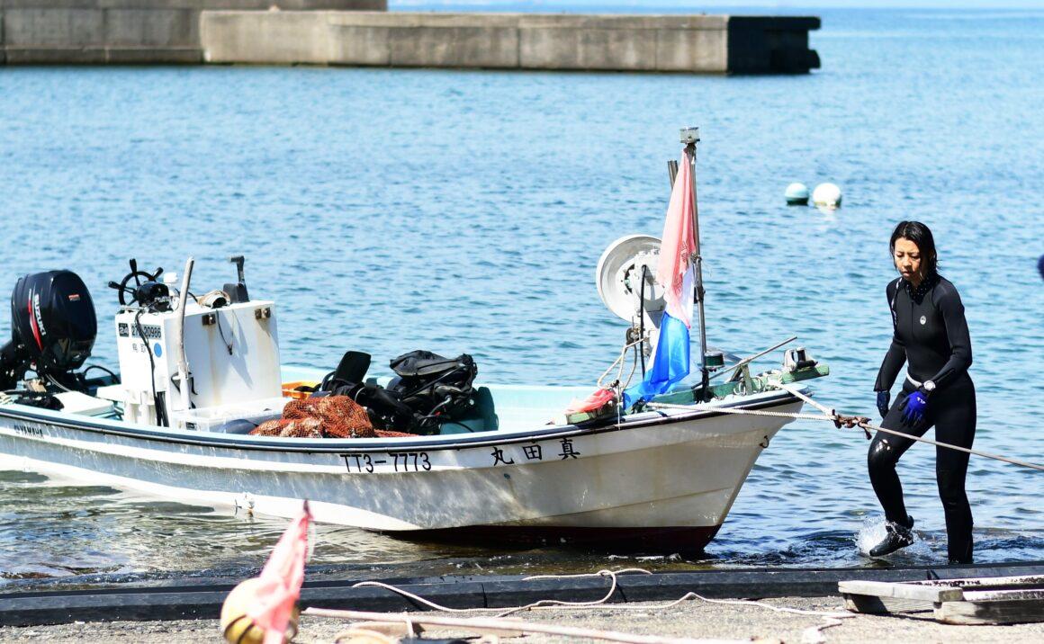 夏が旬の天然「岩ガキ」 素潜り漁で丁寧に