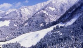 鳥取県若桜町 冬のイベント