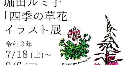 「四季の草花」イラスト展