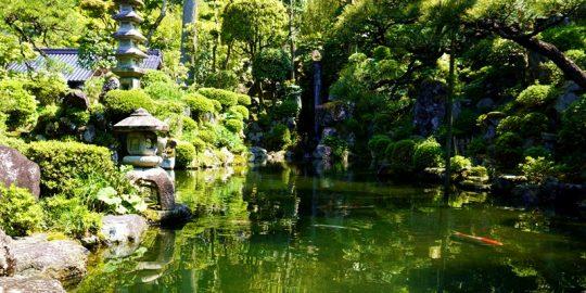 石谷家住宅「春の庭園特別公開」