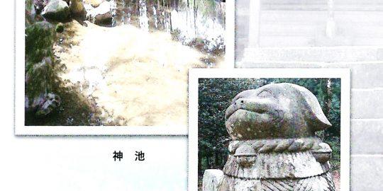 フットパスウォーク 鷲峯神社「神池」を知る